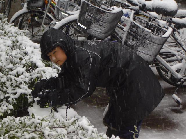 雪だるまを自転車置き場に移動させる下の子